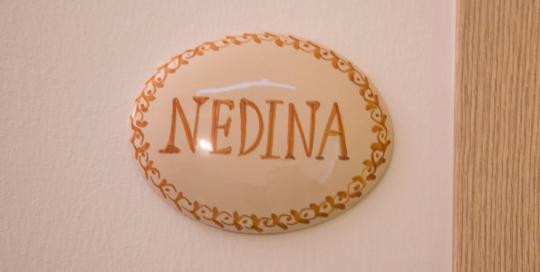 Nedina3